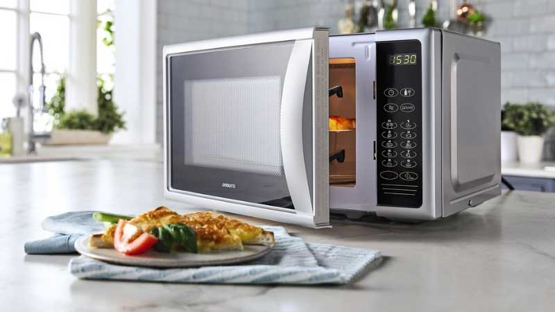Best Dishes for Microwave Reviews