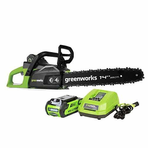 Greenworks 40V Cordless Chainsaw